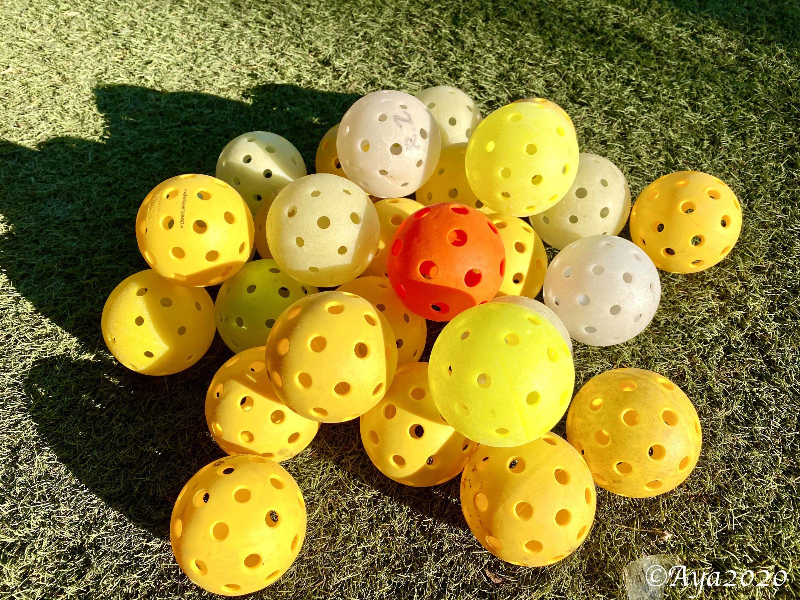 ピックルボール・その4、ピックルボールのデータ色々